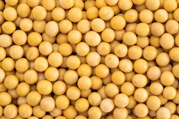 De close-up van de sojabonen van de korrel