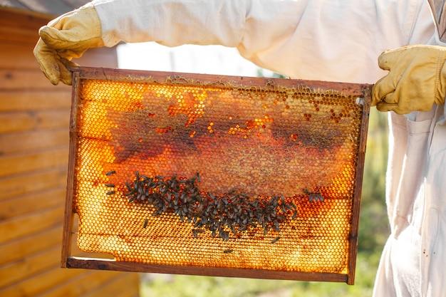 De close-uphanden van imker houden houten kader met honingraat.