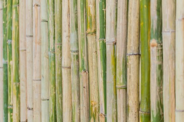 De decoratieachtergrond van de bamboe houten omheining
