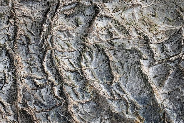 De donkergrijze zwarte stenen achtergrond of textuur. selectieve aandacht