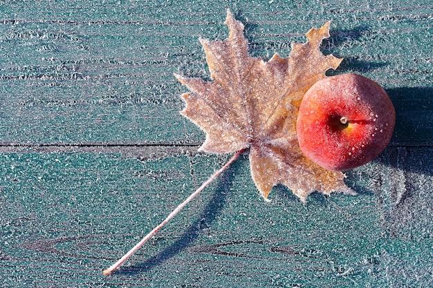 De eerste nachtvorst in de late herfst. de appel was bedekt met rijp.