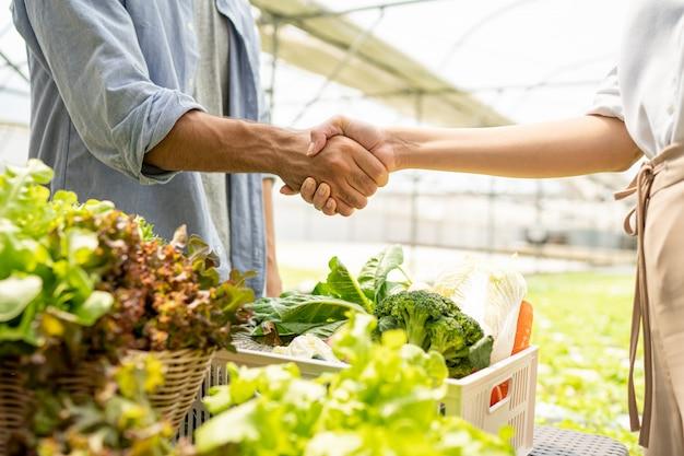 De eigenaar van een biologische groenteboerderij sprak met klanten over de export. handen schudden bij succesvol praten.