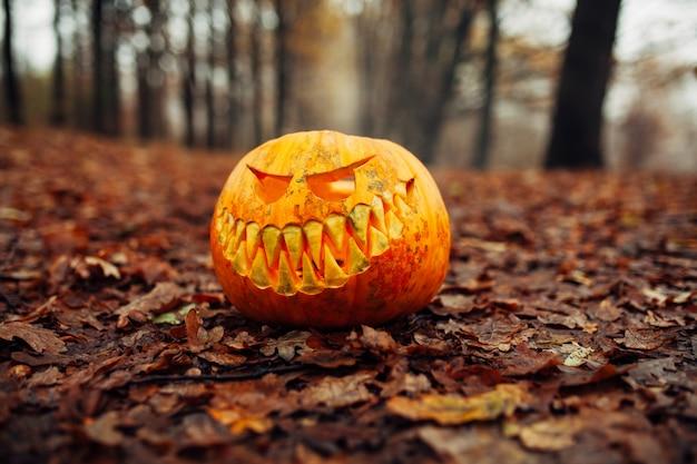 De enge pompoen van halloween