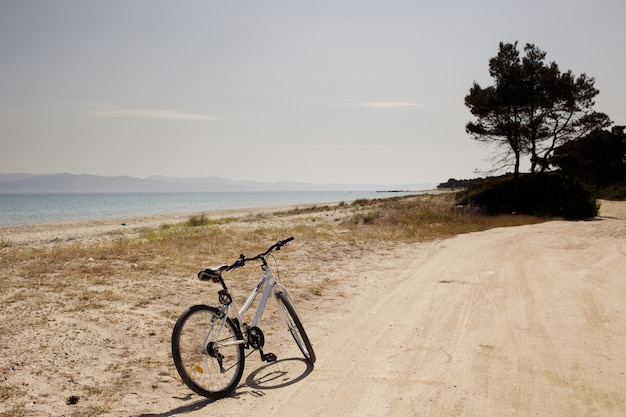 De fiets op de weg