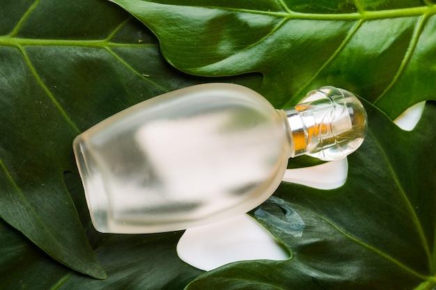 De fles van het parfum op de achtergrond van monsterabladeren. concept voor cosmetica, parfum, geur- en gezondheidsproducten.