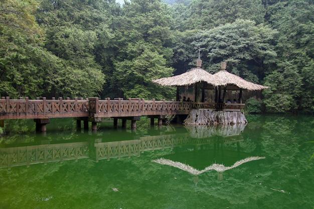 De gangmanier gaat naar paviljoen bij het nationale parkgebied van alishan in taiwan.