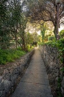 De gangweg van de steen in een bos in mlini, kroatië.