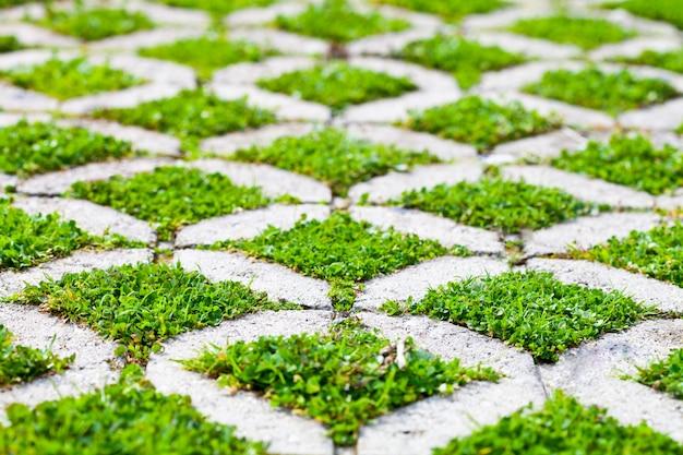De gangweg van het steenblok in het park met groen gras
