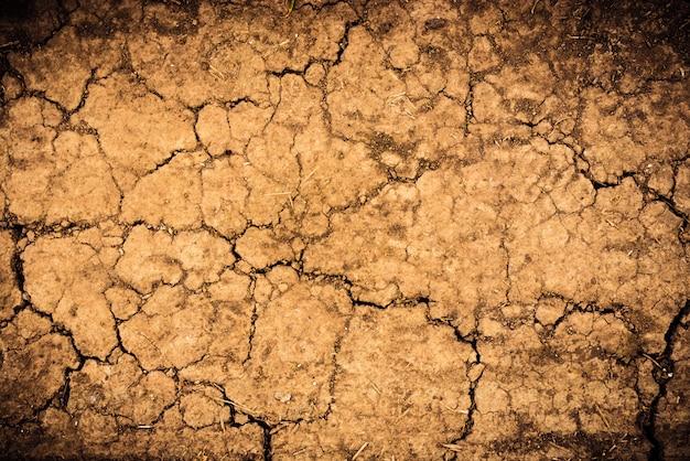 De gebarsten textuur van de grond droge aarde