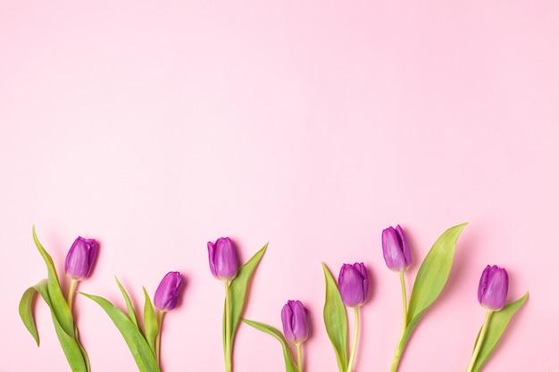 De gele en violette tulpen bloemenvlakte lag op roze