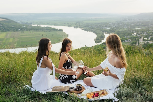 De gelukkige glimlachende vrouwenvrienden roosteren met wijnglazen en is samen leuk.
