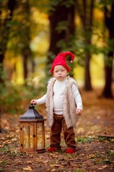 De gelukkige jongen die van de fee bosgnoom en in het bos spelen lopen