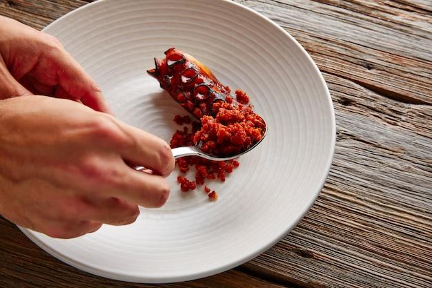 De geroosterde chef-kokhand van de octopus knapperige worst