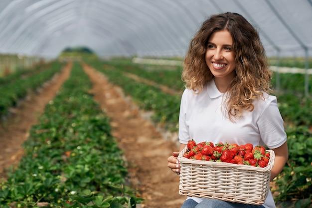 De glimlachende brunette houdt mand met aardbeien