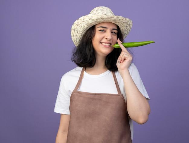 De glimlachende jonge donkerbruine vrouwelijke tuinman in uniform die tuinierende hoed draagt houdt hete peper dicht bij mond die op purpere muur wordt geïsoleerd
