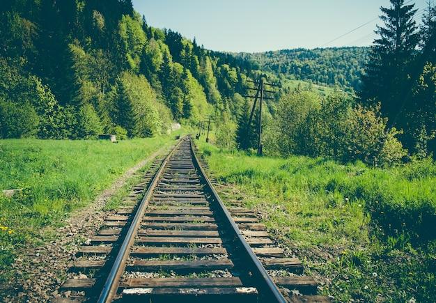 De goederenweg van het spoor in de bergen