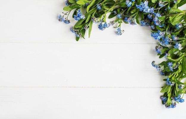 De grens van de vergeet-mij-nietjesbloemen
