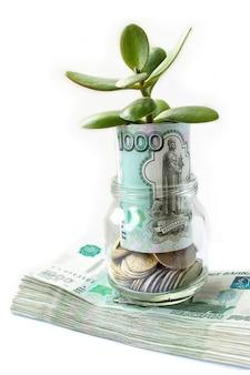 De groeiende boom van geldmunten in de glazen pot.