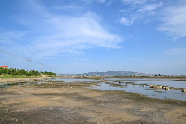 De groene planten op het zoute alkalische land en het water weerspiegelen het landschap
