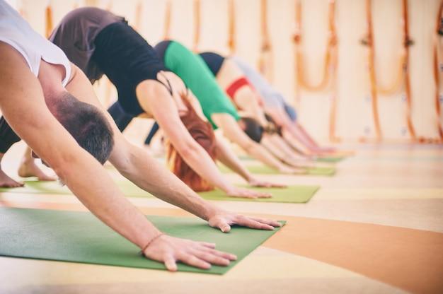 De groep mensen die yoga naar beneden toegekeerde hond doen stelt op matten bij studio