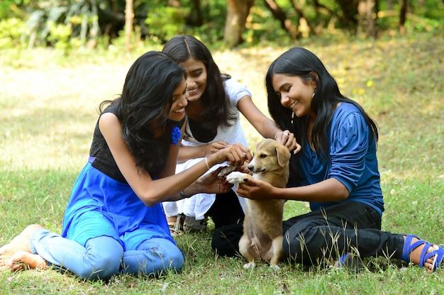 De groepsmeisjes spelen in openlucht met puppyhond in park