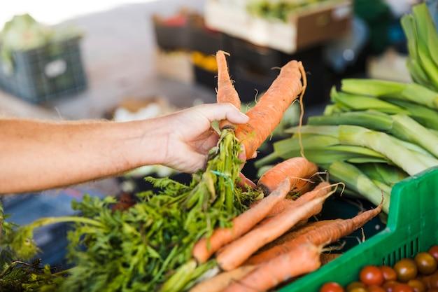 De hand die van de klant verse wortel houdt terwijl het kopen van groente