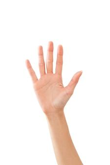 De hand die van de vrouw hallo op wit ondertekent
