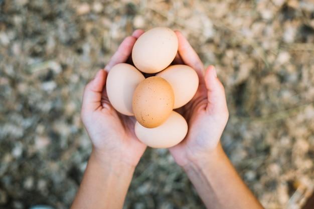 De hand die van een persoon verse eieren houdt
