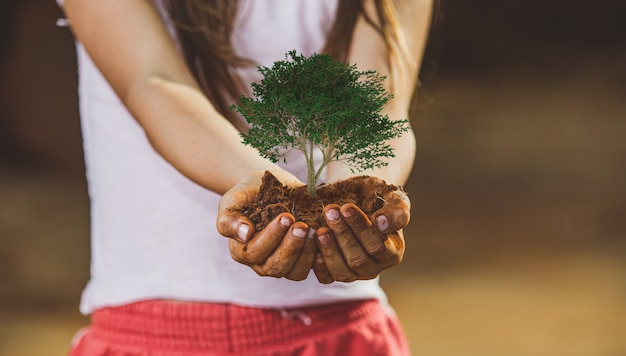 De hand die van het kind de grond houdt, treft voorbereidingen voor plant de boom