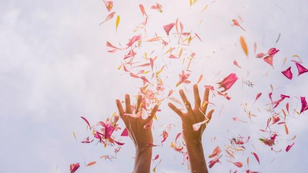 De hand die van het wijfje bloembloemblaadjes tegen hemel in zonlicht werpt