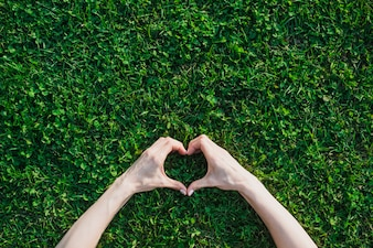 De hand die van het wijfje hartvorm over groen gras maakt