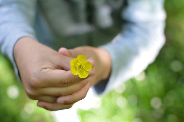 De hand die van kinderen een gele lentebloem houdt
