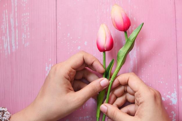 De hand die van vrouwen tulpenbloem op roze muur houdt.