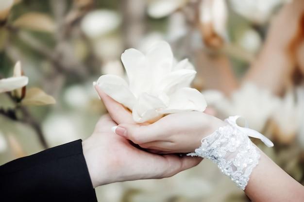 De hand van een vrouw in huwelijkshandschoenen met een magnoliabloem ligt in de hand van een man tegen de achtergrond van de prachtige natuur. bruiloft romantisch concept.