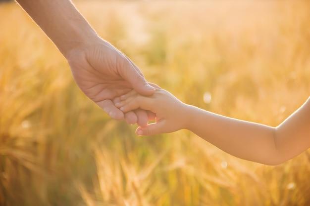 De hand van kind en vader op tarweveld.