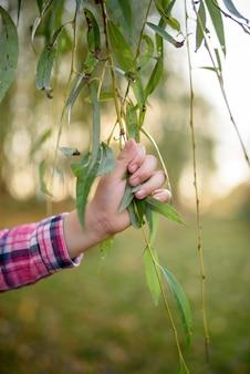 De hand van kinderen houdt op boomtakken.