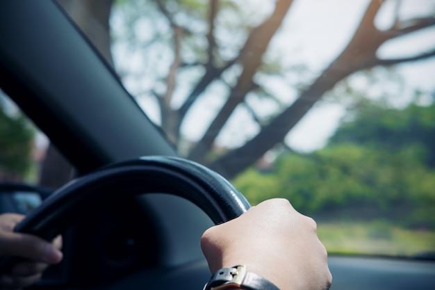 De handen die van de vrouw op zwart stuurwiel houden terwijl het drijven van een auto met grote boomachtergrond