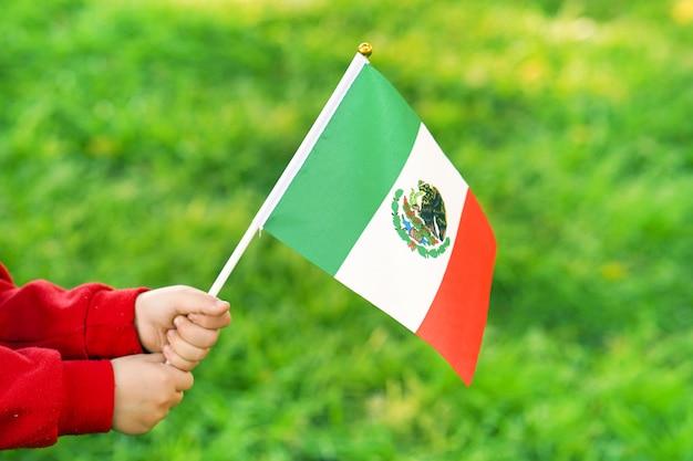De handen van het meisje houden de vlag van mexico