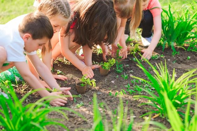 De handen van kinderen die jonge boom samen op zwarte grond planten als concept van de wereld van redding