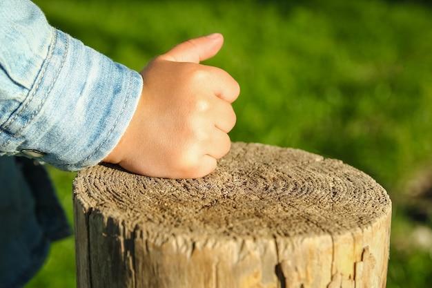 De handen van kinderen houden een boomstronk vast in het park in de natuur Premium Foto