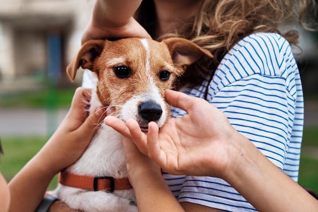 De handen van kinderen strelen hond buiten