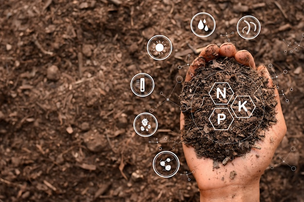 De handen van mannen houden de grond vast die rijk is aan alle elementen die nodig zijn om planten te laten groeien en bevatten digitale pictogrammen.