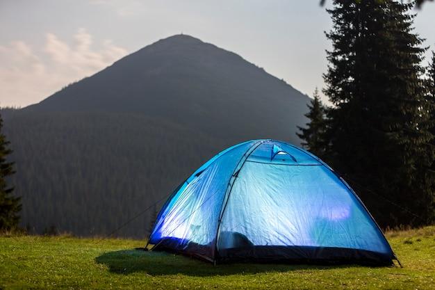 De heldere blauwe tent van toeristenwandelaars op groene grasrijke bosopheldering onder lange pijnboombomen