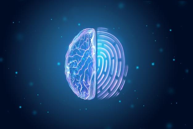 De helft van de weergave van de hersenen en de vingerafdruk van bovenaf.