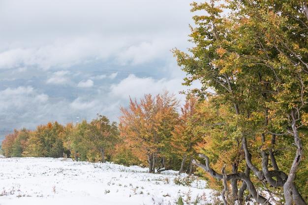 De helling met sneeuw en mooie, kleurrijke herfstbomen op bergketen
