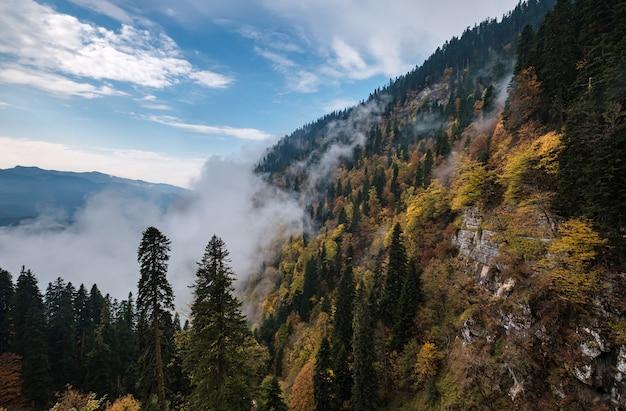 De herfst berglandschap met kleurrijke bossen en hoge toppen kaukasus-gebergte. rosa khutor-skitoevlucht in laagseizoen, rusland, sochi. berg wolken dans