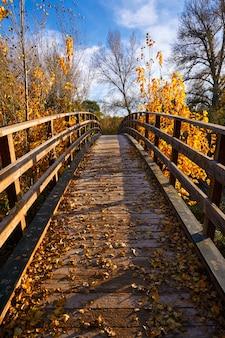 De herfst houten brug parque de turia van de zonsondergang