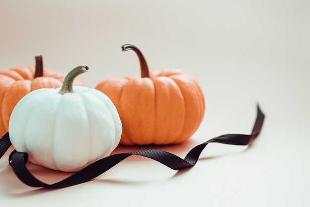 De herfst oranje en witte pompoenen met zwart lint