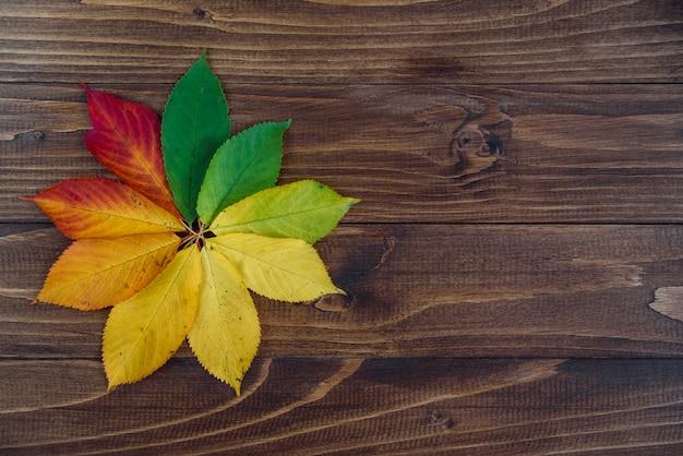De herfst verlaat overgang van groen naar rood op houten achtergrond
