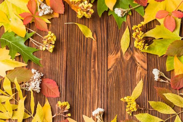 De herfstbanner met kleurrijke boombladeren en droge bloemen op bruin hout